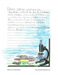 Bretton Woods Letter 6