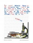 Bretton Woods Letter 17