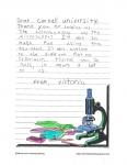 Bretton Woods Letter 19