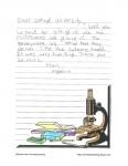 Bretton Woods Letter 23